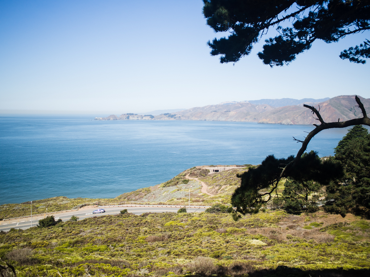 Bay View from the Presidio of San Francisco | Carla Gabriel Garcia