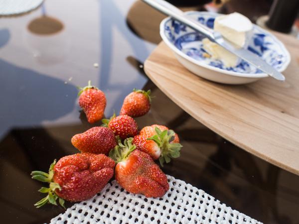 garden-strawberries