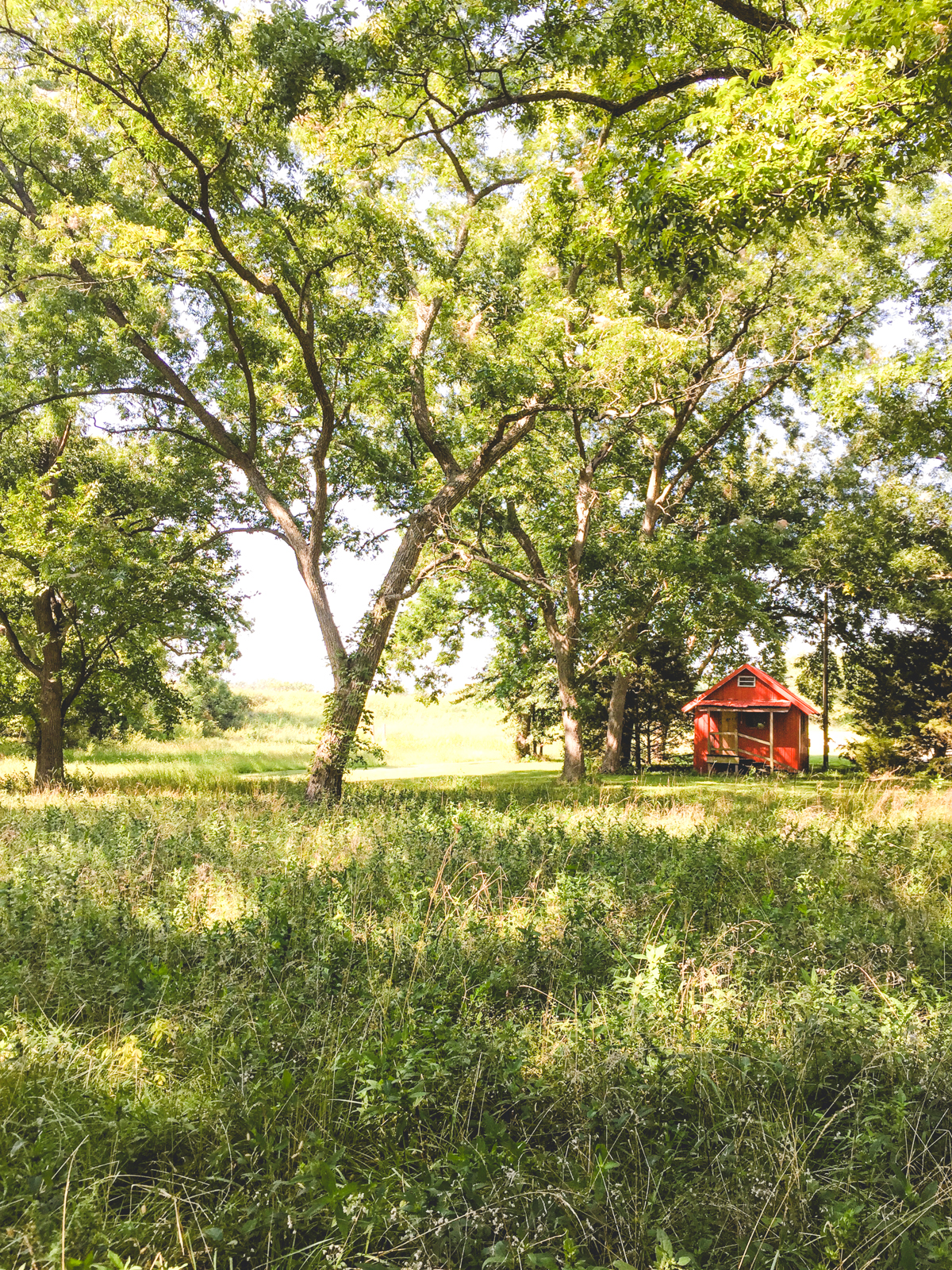 Red Cabin | Chanute, KS | Carla Gabriel Garcia